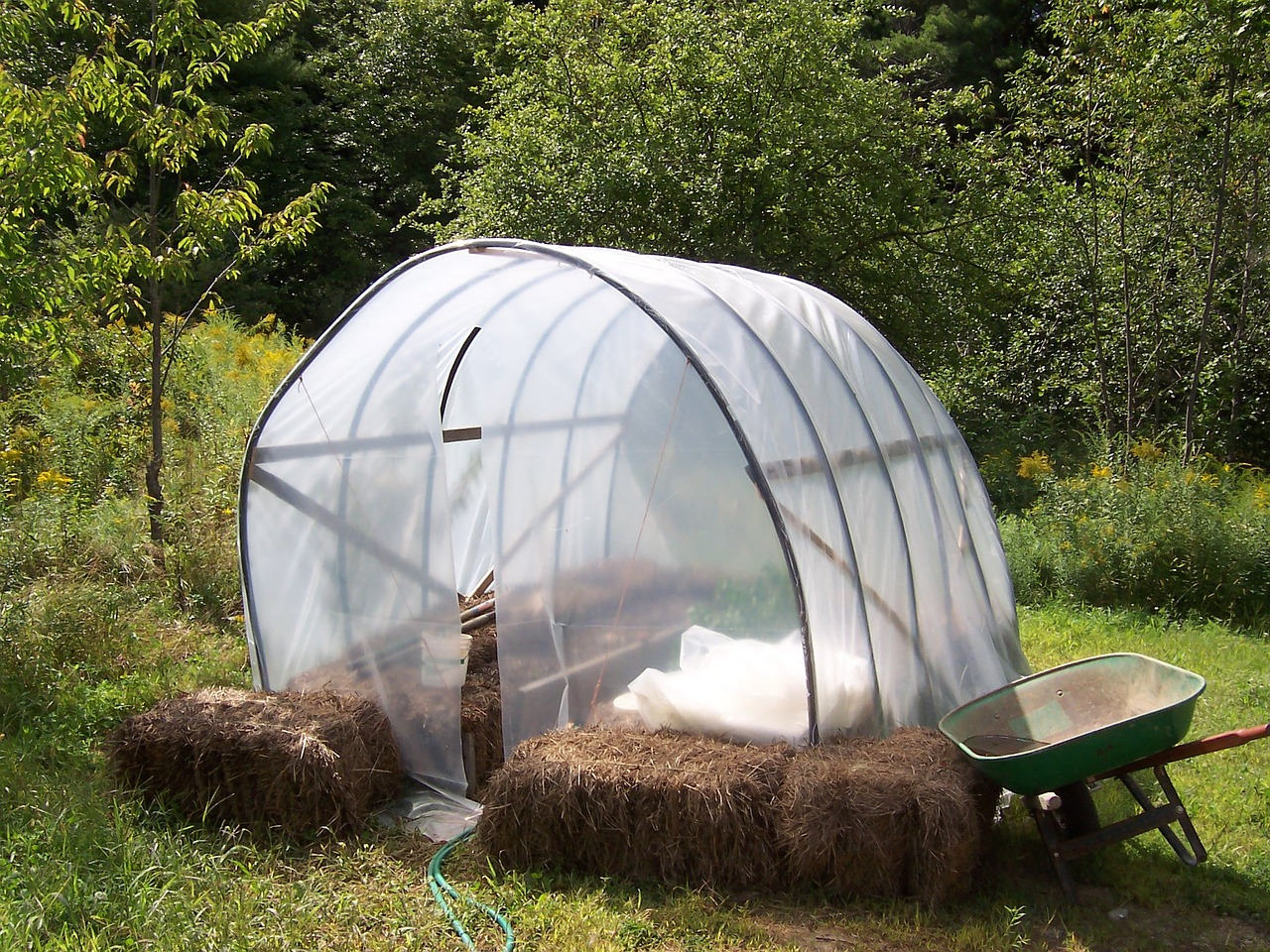 Quelques conseils pour réussir un premier jardin bio