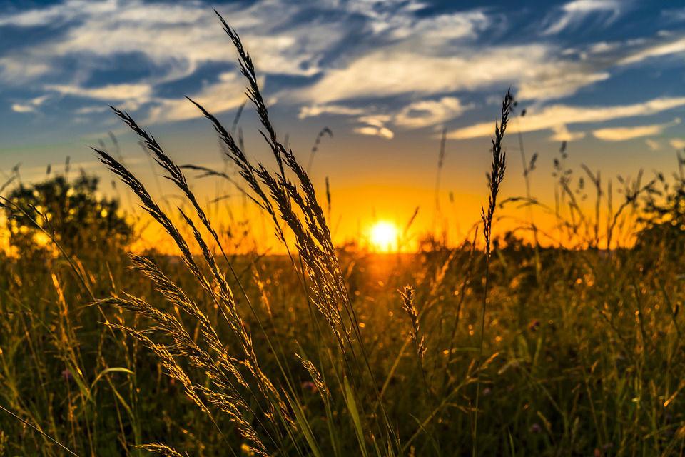 Astuce écolo : le matériel agricole d'occasion