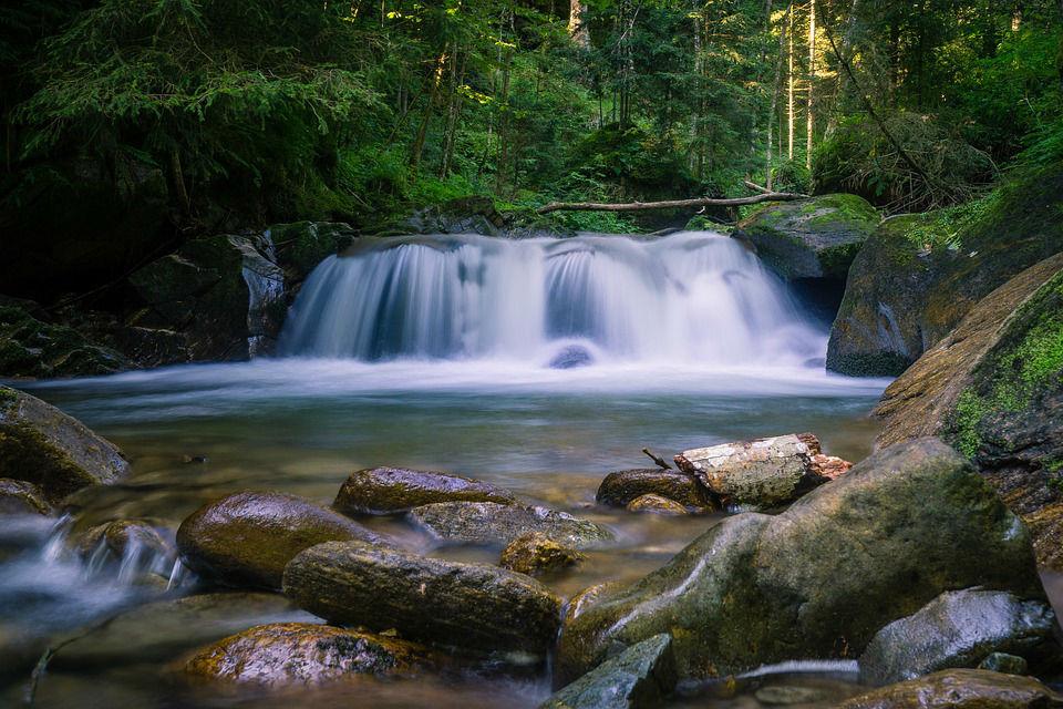Protéger la nature et améliorer les niveaux des nappes phréatiques