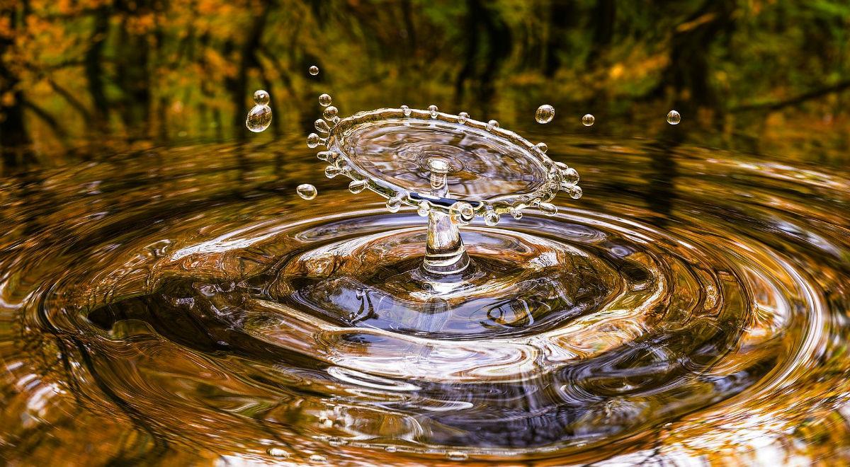 Qu'est-ce que le CI eau ?