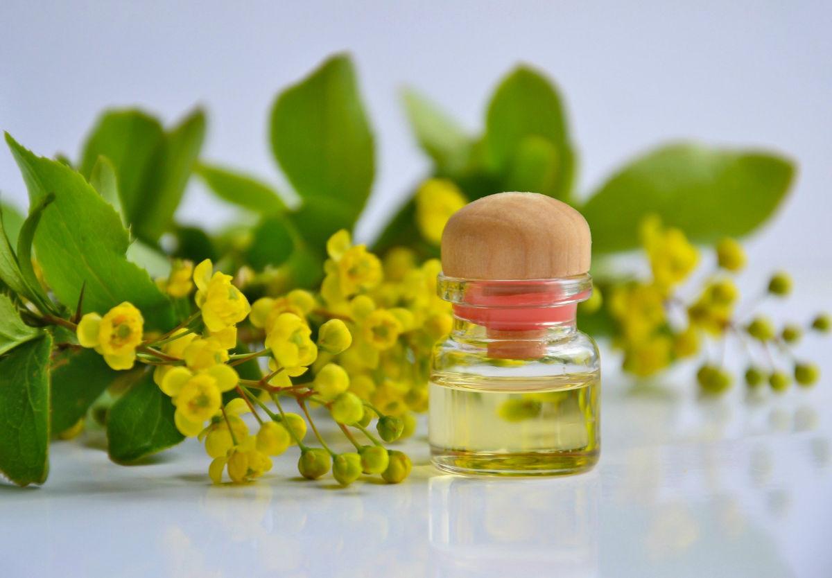 Les utilisations particulières de l'huile essentielle de hélichryce